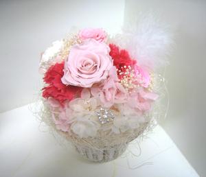 Bd_pink3